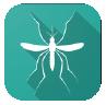 Imagem do Aedes em Foco